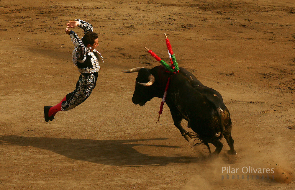 "Spanish Bullfighter David Fandila ""El Fandi"" drives banderillas into a bull during a bullfight in Acho square in Lima November 5, 2006."