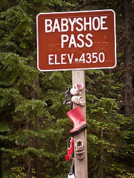 Babyshoe Pass elev. 4350, forest service road location sign, Gifford Pinchot National Forest, WA, USA