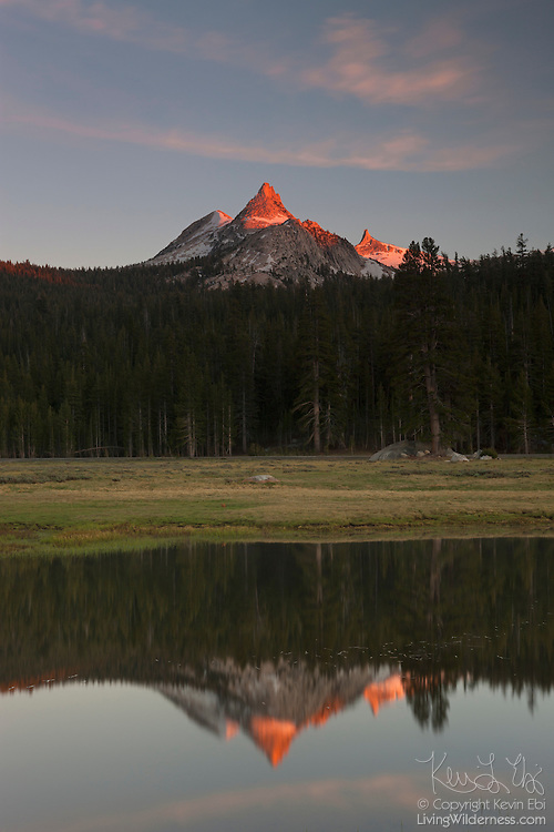 Unicorn Peak, a 10823 foot (3299 meter) peak in the Cathedral Range of California, is reflected in a small pond in the Tuolumne Meadows of Yosemite National Park. While the peak has three summits, it appears as a single spire from narrow angles in the Tuolumne Meadows. Cockscomb, a 11065 foot (3373 meter) peak also in the Cathedral Range, is visible to the right of Unicorn Peak.