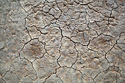 Dry and cracked soil, near Johnson Valley, April 4, 2012.<br /> <br /> photo &copy; peter-juelich.com
