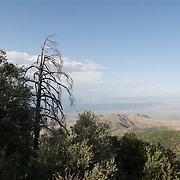 Mount Lemmon, AZ