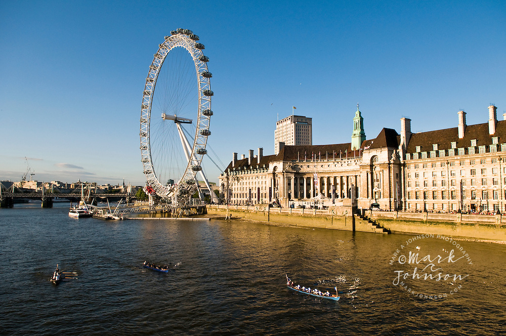 Scullers on the River Thames, London Eye & the London Aquarium in background, England, UK