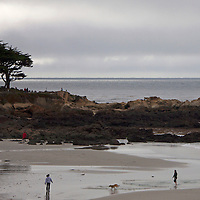 USA, California, Carmel by the Sea. People and dog on Carmel Beach.