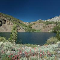 """Panorama of Blue Lake, near Virginia Lake. 38° 3'5.10""""N 119°16'7.55""""W"""
