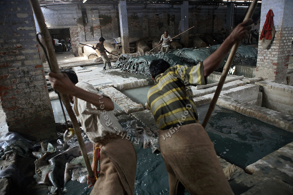 Workers in one of the large tanneries located in Jajmau area of Kanpur, Uttar Pradesh, are processing leather in chromium baths, or liming, while complying to little, if any, health and safety regulations.