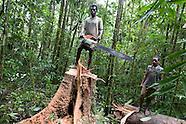 2008 Papua New Guinea, 'Paradise Lost'