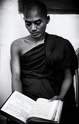A Monk studies for an upcoming exam. Yangon (Rangoon) Myanmar (Burma) January 2012