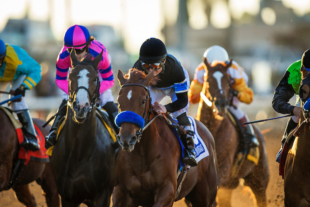 December 12, 2015:  Pacific Heat with Joe Talamo up and Stays in Vegas and Alex Solis battle for position in the Starlet Stakes at Los Alamitos Race Track in Cypress California. Evers/ESW/CSM