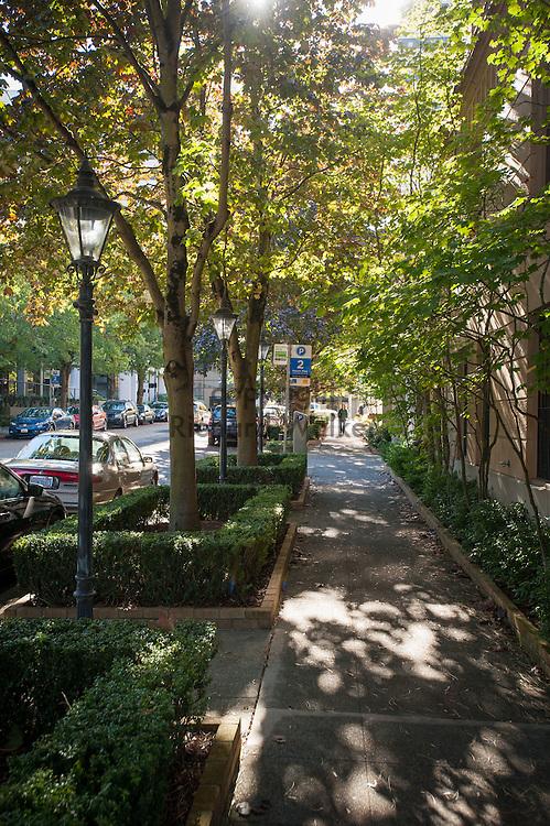 2016 October 11 - Leafy sidewalk along Summit Ave, First Hill, Seattle, WA, USA. By Richard Walker