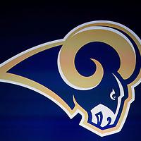 Rams Celebration 1/15/16