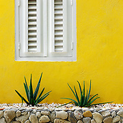SHOT 3/17/11 9:09:36 AM -Agave plants in a walkway under a window in Willemstad. Willemstad is the capital city of Curaçao, an island in the southern Caribbean Sea that forms a constituent country of the Kingdom of the Netherlands. Formerly the capital of the Netherlands Antilles prior to its dissolution in 2010, it has an estimated population of 140,000. The historic centre of the city consists of two quarters: Punda and Otrobanda. The city center of Willemstad boasts an array of colonial architecture that is influenced by Dutch styles. The city center, with its peculiar architecture and beautiful harbour entry, has been made a UNESCO world heritage site. (Photo by Marc Piscotty / © 2010)