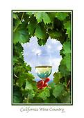 Wine Country Regions Samples