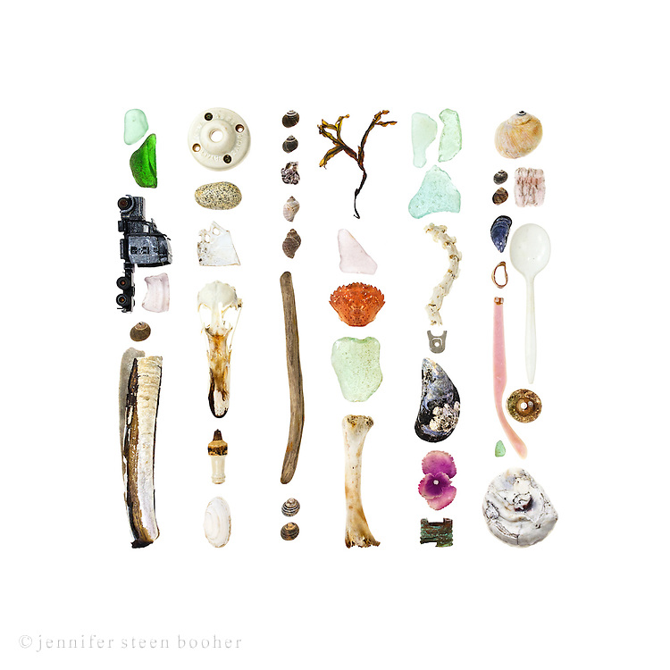 From left to right, top to bottom:<br /> <br /> 1. sea glass, die-cast toy truck, sea glass, Common Periwinkle (Littorina littorea), Razor Clam (Ensis directus)<br /> 2. ceramic electrical fixture, granite beach stone, porcelain shard, Common Eider skull (Somateria mollissima), ceramic spark plug, Soft-shelled Clam (Mya arenaria)<br /> 3. more periwinkles, Northern Rock Barnacle clump (Semibalanus balanoides), two Dog Whelks (Nucella lapillus), driftwood, two Common Periwinkle<br /> 4. seaweed &ndash; I&rsquo;m not so good with marine algae, but I think it&rsquo;s Rockweed (Fucus distichus), sea glass, Green Crab (Carcinus maenas), sea glass, bird leg bone<br /> 5. more sea glass, Common Eider spine, aluminum soda can tab, Blue Mussel (Mytilus edulis), fabric flower, copper doohickey (maybe part of a hose)<br /> 6. Moon snail (Lunatia heros), more periwinkles, styrofoam packing peanut, another Blue Mussel, plastic spoon, lobster-claw band, plastic earpiece from sunglasses, sea glass, and an oyster shell (the shape looks like Ostrea edulis, a.k.a. the European flat oyster, which means it was most likely farmed, not wild)