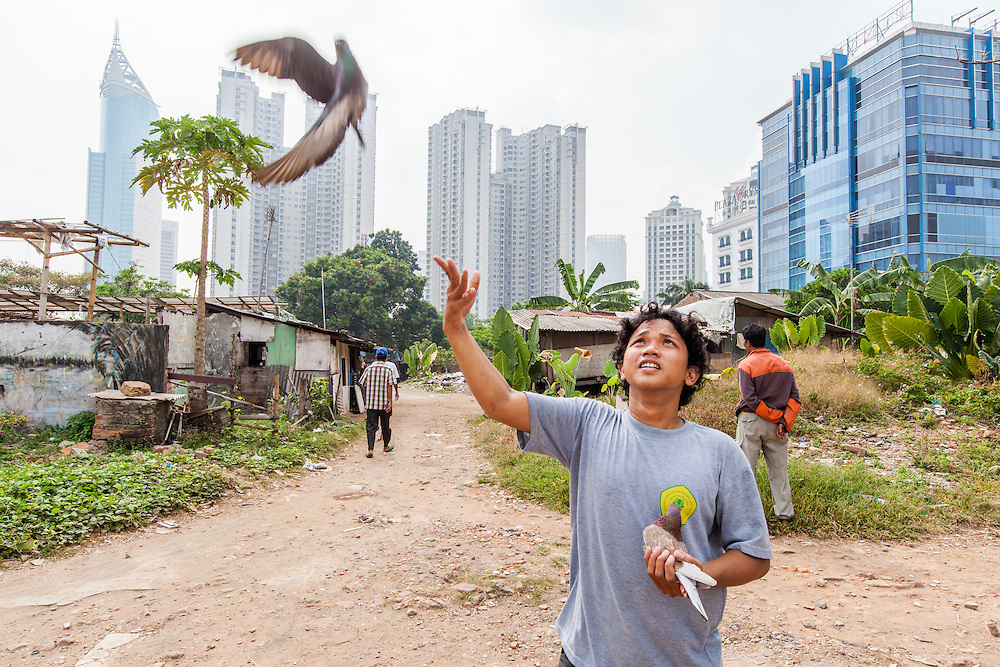 A resident of the Karet Bivak neighborhood in Jakarta is seen flying his pigeon.  In the background is the BNI Tower and  Sudirman Park, an upscale apartment complex.  <br /> <br /> Despite the slowdown in the economy prices and rents are still rising in Jakarta.  Nevertheless, no big project have stopped.  The pace of construction is slow since the city has thousands of acres of one and two-story houses with multiple owners and no easy way to purchase and redevelop them.  September 20, 2013.
