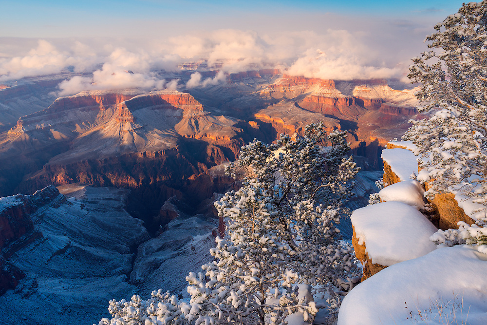 A winter scene with snow at Grand Canyon National Park.