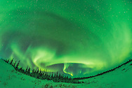 A frame from an 1100-frame time-lapse of the aurora borealis in a modest display from Churchill, Manitoba, January 27, 2017. This was toward the start of the display with the curtains well defined as a classic arc across the north along the auroral oval. This was from later in the display closer to midnight when the diffuse glows and arcs took on a more defined form for a while with an odd north to south curtain. <br /> <br /> This was with the Rokinon 12mm lens at f/2.8 for 10 seconds at ISO 3200 with the Nikon D750.