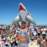 CATEGORY 3<br />