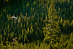 Mount Tahoma Trails Association (MTTA) The Yurt, a two story 24 ft diameter cross country ski trail hut in the Tahoma State Forest in the Washington state Cascade Mountain Range near Mount Rainier.