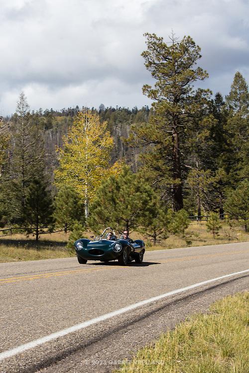 1956 Jaguar D-Type zooms through the downhill curve, on the 2012 Santa Fe Concorso High Mountain Tour.