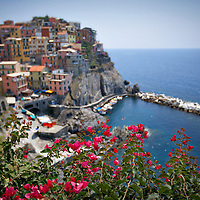Colorful tower houses on the background cliff-side, Manarola, Italy