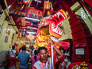 27 JANUARY 2017 - BANGKOK, THAILAND: Chinese dragon dancers perform in a Chinese Shrine in Bangkok on Chinese New Year. 2017 is the Year of the Rooster in the Chinese zodiac. This year's Lunar New Year festivities in Bangkok were toned down because many people are still mourning the death Bhumibol Adulyadej, the Late King of Thailand, who died on Oct 13, 2016. Chinese New Year is widely celebrated in Thailand, because ethnic Chinese are about 15% of the Thai population.      PHOTO BY JACK KURTZ
