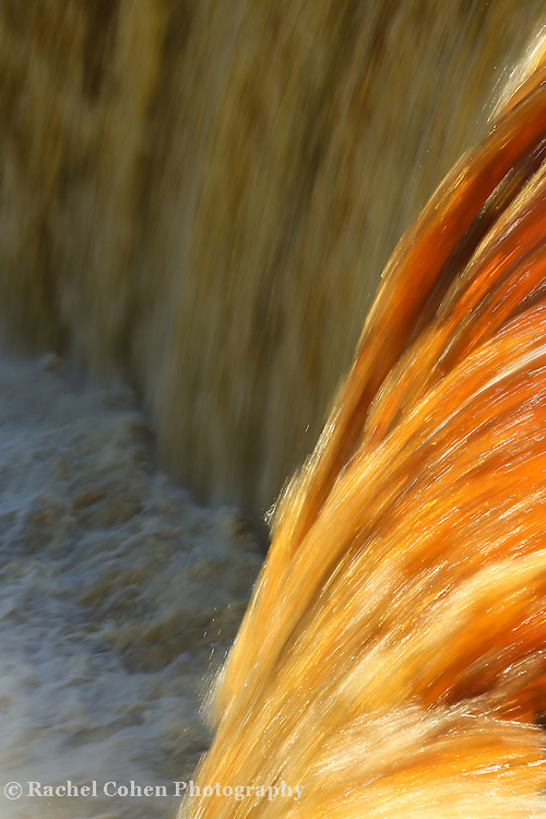 &quot;Liquid Amber&quot;<br /> <br /> Tahquamenon Falls in amber and gold.<br /> <br /> Waterfalls by Rachel Cohen