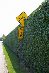 road sign being covered by a hedge in The Hamptons