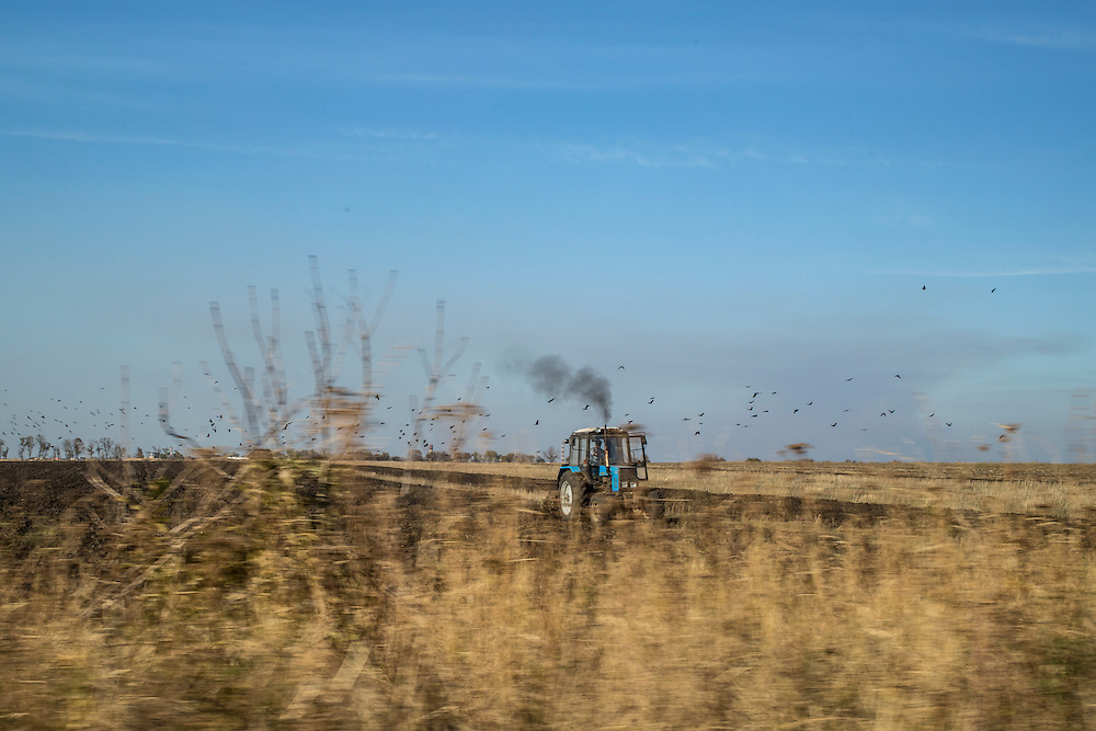 MARIUPOL, UKRAINE - OCTOBER 13: A flock of birds passes by as a tractor plows a field on October 13, 2014 in Mariupol, Ukraine. The United Nations has registered more than 360,000 people who have been forced to leave their homes due to fighting in the East, though the true number is believed to be much higher.(Photo by Brendan Hoffman/Getty Images) *** Local Caption ***