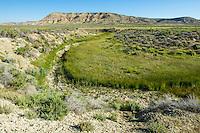 Intermittent stream in the Red Desert of Wyoming