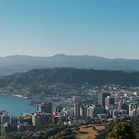 Wellington landscapes