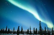 Alaska. Aurora Borealis.