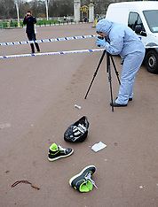 FEB 03 2013 Police taser man outside Buckingham Palace