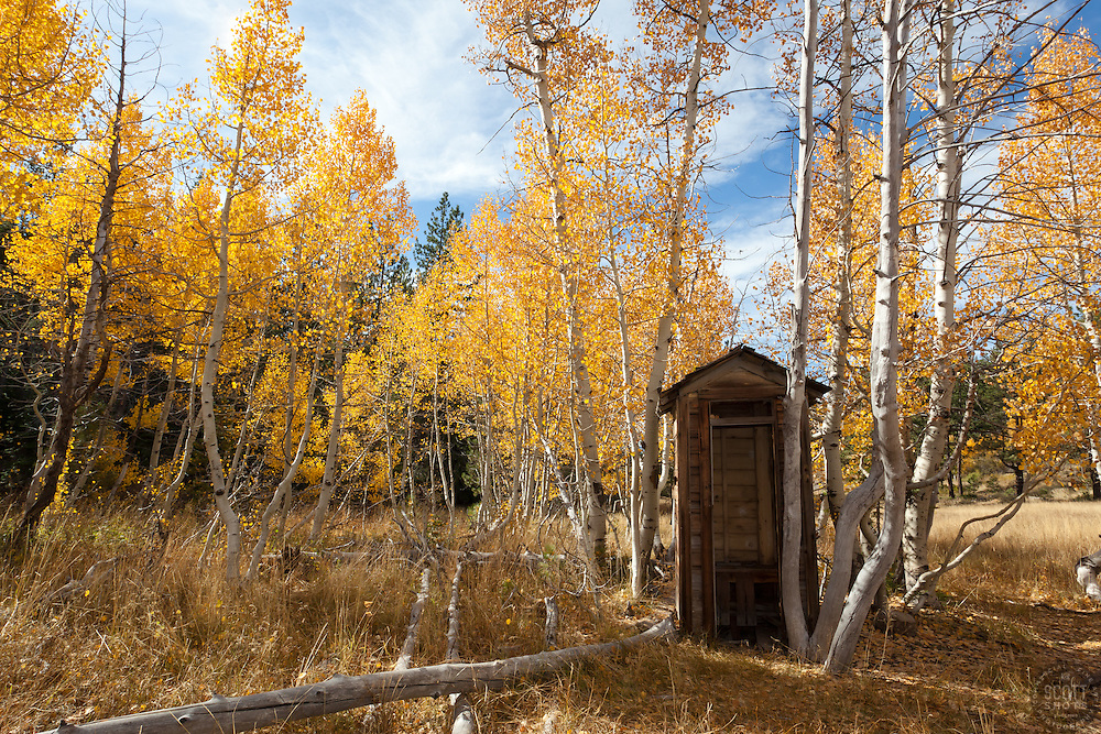 """Outhouse in the Aspen"" - This old outhouse was photographed among the yellow fall aspen at the shack near Brockway Summit in Tahoe."