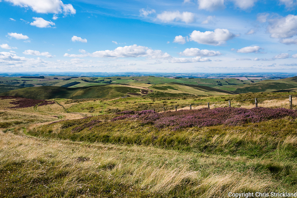 29th August 2016. Looking north across the Scottish Borders on Dere Street in the Cheviot Hills near Hownam.