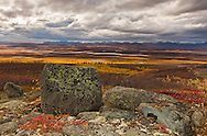 Partly cloudy skies reveal a patchwork of autumn colors in the Maclaren River Valley with the Clearwater Mountains of the Alaska Range in the background in Interior Alaska. Afternoon.