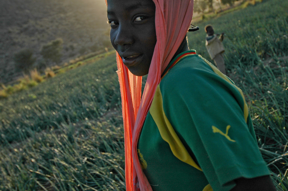 A Molako girl stands in a field of onions in a small village outside of Maroua, Cameroon. 1/15/2007 Photo by Ben Depp