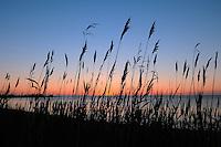 Sturgeon Point, Lake Huron