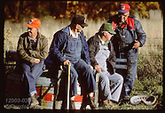 35: RHINELAND FARMERS, TOWN LIFE