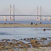 28 Severn Bridge to Avonmouth