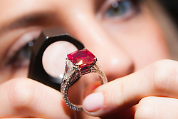 Sotheby's, London, October 20th 2014. Jewels from the famed collection of Dimitri Mavrommatis will be offered in Sotheby&rsquo;s Geneva sale of Magnificent Jewels &amp; Noble Jewels on 12 November. PICTURED: A woman examines the 8.62 carat cushion-shaped Burmese Ruby, known as the Graff Ruby, a truly exceptional example of Mogok rubies, which are <br /> arguably the rarest of all gemstones, with the ring having an estimated value of &pound;4.2 - 5million.