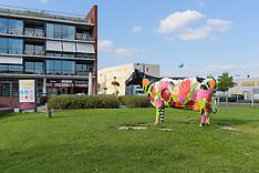 Zeewolde, Flevoland, Netherlands