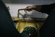 "The millions of tons of buried toxic waste has been found in the food, the water and the air. A recent study conducted by the US Navy, which has a base on the outskirts of Naples, found 5,281 contaminated or suspicious locations. It also found that water from 92 percent of the private wells sampled outside the base posed an ""unacceptable health risk."""