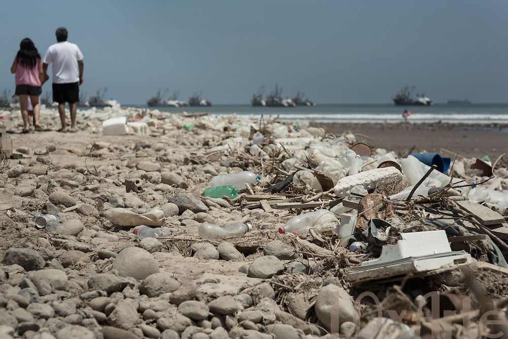Volunariados de la ONG Tortugas Marinas Arica y ariqueños recogen basura botada en los terrenos de Azapa y traida por el río San José a la playa Chinchorro, al sector donde se encuentran tortugas verdes.