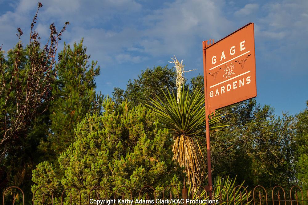 Gage Gardens, Gage Motel, Marathon, Texas, west Texas, yucca, juniper