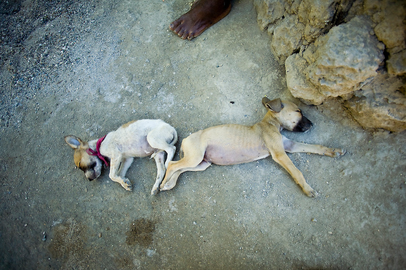 Central Plateau, Haiti, 12/3/2009. Photo by Ben Depp