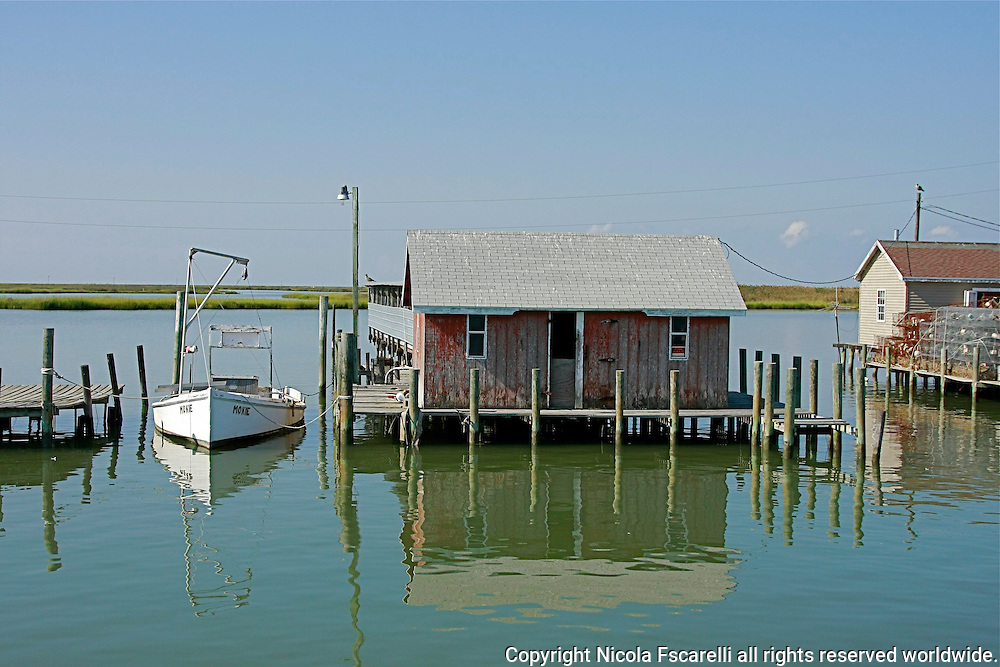 As we approached the main dock on Tangier Island ,the dock side crab-huts seem to be floating on the water.