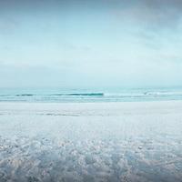 Gulf of Mexico, Florida