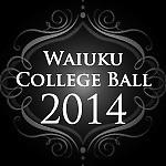 Waiuku Coillege Ball 2014