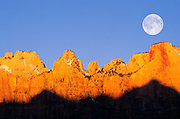 Full moon and winter dawn on the Towers of the Virgin, Zion National Park, Utah