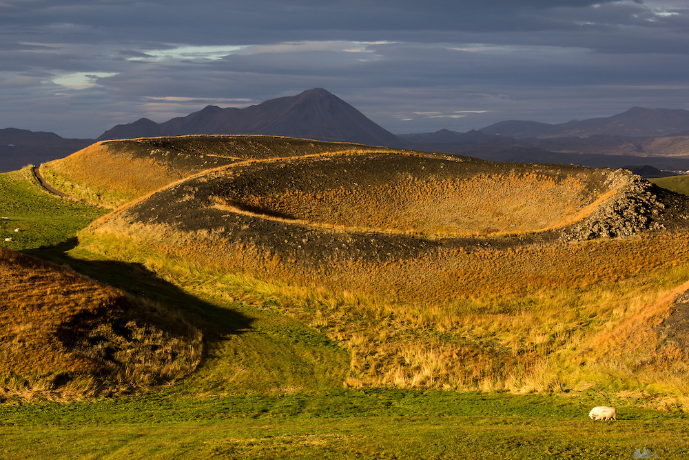 The golden hour over the pseudo-craters of Lake Myvatn, at Skutustadir